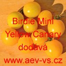 Rajče balkonové Birdie Mini Yellow Canary