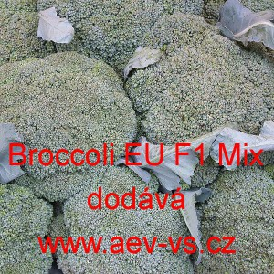 Brokolice hybridní Broccoli EU F1 Mix